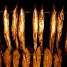 طرح توجیهی تولید ماهی دودی و شور