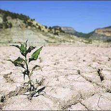 پیش بینی خشکسالی با استفاده از روش های آماری و سری های زمانی در هرمزگان با تاکید بر رودخانه میانب
